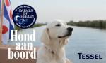 Tessel Hond aan boord Daemes en Heeren Sloepenpost Sloep Honden aan boord Trouwe viervoeter