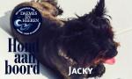 Jacky Hond aan Boord Daemes en Heeren Sloepen Tender Cabins Sloepenpost Sloepenkaart Alles over sloepen Sloepenboekje Honden aan boord trouwe viervoeter