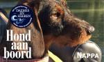 Nappa Safury Hond aan Boord Daemes en Heeren Sloepen Tender Cabins Sloepenpost Sloepenkaart Alles over sloepen Sloepenboekje Honden aan boord Trouwe Viervoeter