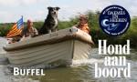 Enkhuizensloep Buffel Hond aan Boord Daemes en Heeren Sloepen Tender Cabins Sloepenpost Sloepenkaart Alles over sloepen Sloepenboekje Honden aan boord