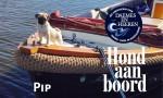 Pip Hond aan boord Welkom op het water Alles over sloepen Daemes en Heeren Sloeproutes Sloepenkaart