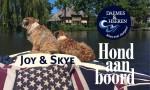 Joy & Skye Hond aan Boord Daemes en Heeren Sloepen Tender Cabins Sloepenpost Sloepenkaart Alles over sloepen Sloepenboekje Honden aan boord Trouwe viervoeters Welkom op het water