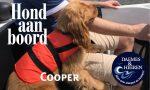 Cooper Hond aan Boord Daemes en Heeren Sloepen Tender Cabins Sloepenpost Sloepenkaart Alles over sloepen Sloepenboekje Honden aan boord Trouwe viervoeters
