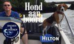 Hilton Hond aan Boord Daemes en Heeren Sloepen Tender Cabins Sloepenpost Sloepenkaart Alles over sloepen Sloepenboekje Honden aan boord Trouwe viervoeters