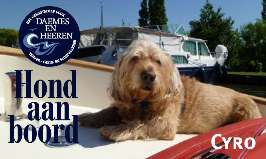 Cyro Hond aan boord Daemes en Heeren Sloepenpost Sloep Honden aan boord trouwe viervoeter