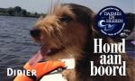 Didier Hond aan boord Daemes en Heeren Sloepenpost Sloep Honden aan boord trouwe viervoeter