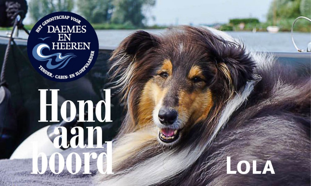 Lola Hond aan Boord Daemes en Heeren Sloepen Tender Cabins Sloepenpost Sloepenkaart Alles over sloepen Sloepenboekje Honden aan boord Trouwe viervoeters