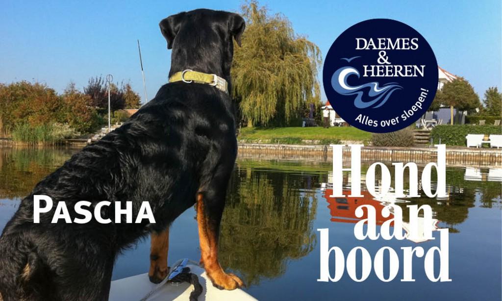 Pascha Hond aan Boord Daemes en Heeren Sloepen Tender Cabins Sloepenpost Sloepenkaart Alles over sloepen Sloepenboekje Honden aan boord Trouwe viervoeters Welkom op het water