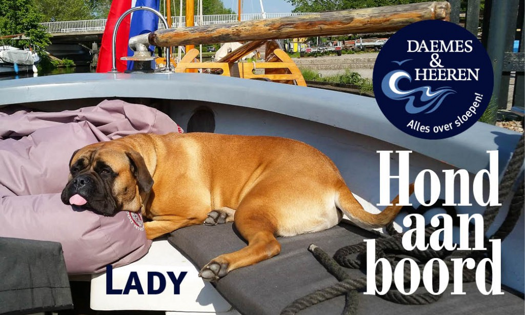Lady Hond aan Boord Daemes en Heeren Sloepen Tender Cabins Sloepenpost Sloepenkaart Alles over sloepen Sloepenboekje Honden aan boord Trouwe viervoeters