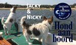 Jacky & Nicky Hond aan Boord Daemes en Heeren Sloepen Tender Cabins Sloepenpost Sloepenkaart Alles over sloepen Sloepenboekje Honden aan boord Trouwe viervoeters