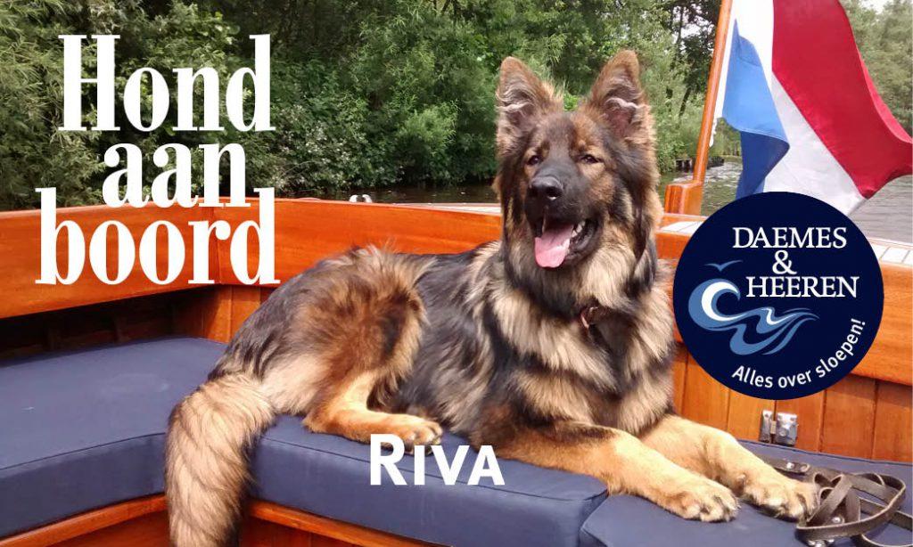 Riva Hond aan Boord Daemes en Heeren Sloepen Tender Cabins Sloepenpost Sloepenkaart Alles over sloepen Sloepenboekje Honden aan boord Trouwe viervoeters