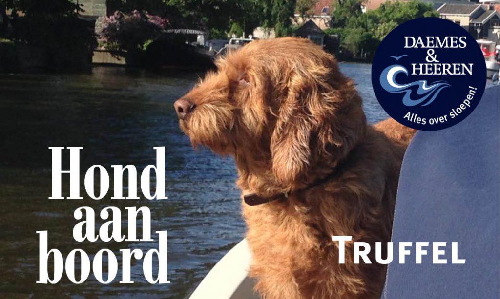 Truffel Hond aan Boord Daemes en Heeren Sloepen Tender Cabins Sloepenpost Sloepenkaart Alles over sloepen Sloepenboekje Honden aan boord Trouwe viervoeters