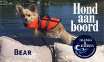 Bear Hond aan Boord Daemes en Heeren Sloepen Tender Cabins Sloepenpost Sloepenkaart Alles over sloepen Sloepenboekje Honden aan boord Trouwe viervoeters